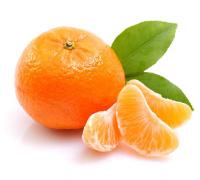 Orange Juice Industry